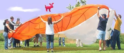 group_in_park_tossing_red_dog.jpg
